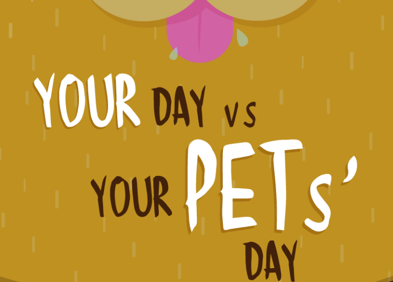 Your Day vs Your Pets' Day featured image