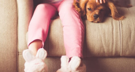 French Door Safety for Children and Pets Image